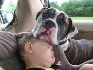WeeSleep Baby and Dog